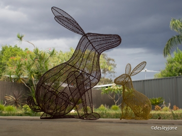 Double Bunnies. 17mm f/5.6 1/160s ISO400