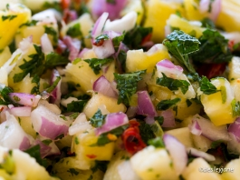 Pineapple Salsa (close). 60mm f/3.5 1/60s ISO200