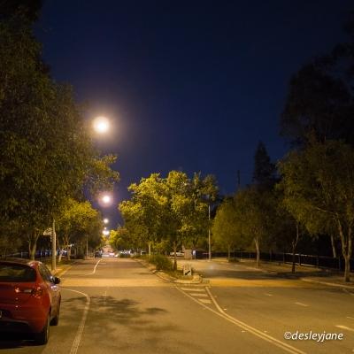 Alfa on the Street