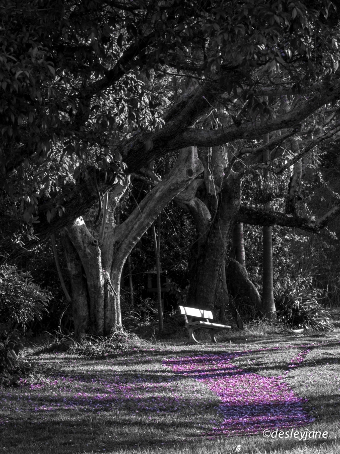 Lavender Road.