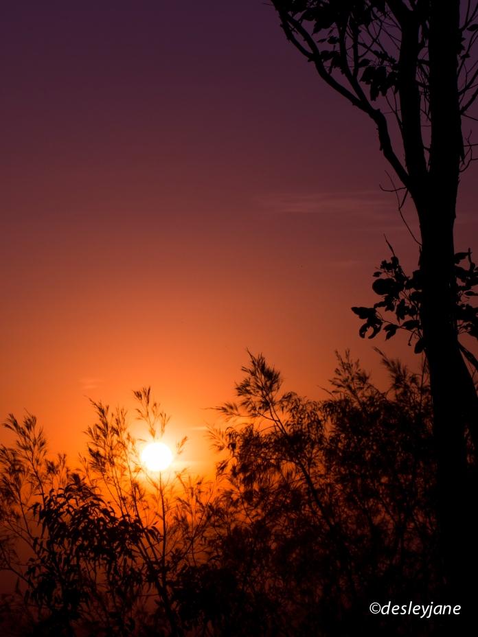 My Tamborine, Australia