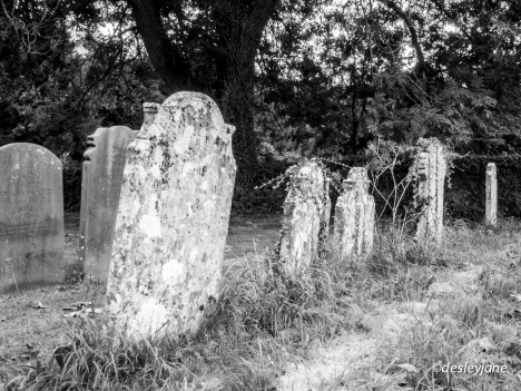 Leaning Graves. 17m f/22 1/50s ISO1000