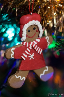 Gingerbread Man. 60mm f/2.8 1/20s ISO1600