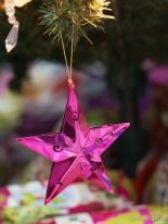 Pink Star. 60mm f/2.8 1/6s ISO1600
