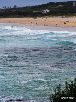 Maroubra at Play. 60mm f/22 1/160s ISO500
