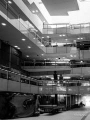Library - interior.