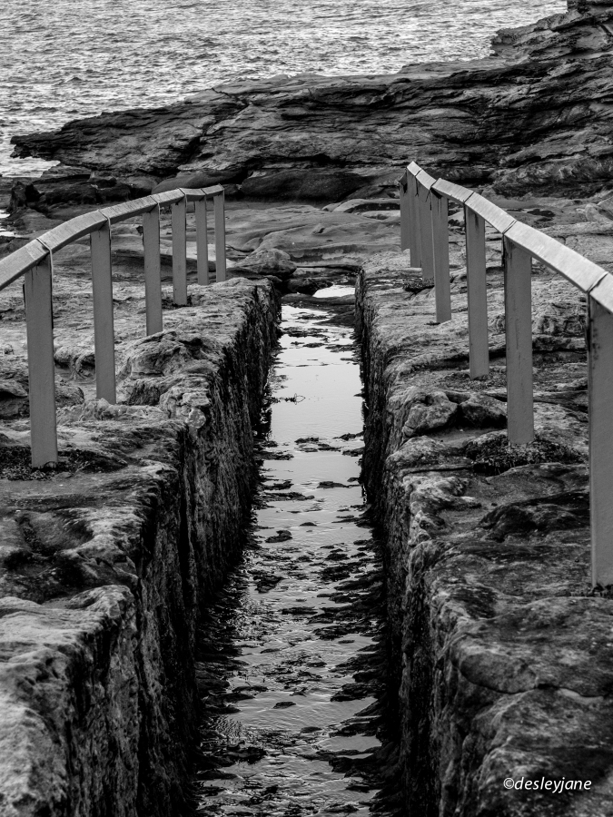 Maroubra Path.