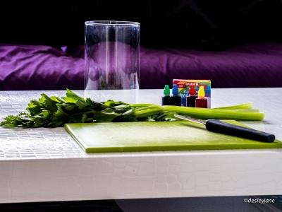 Ingredients (Celery).