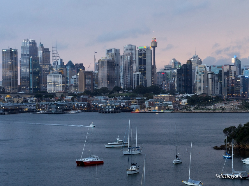 201503_Sydney-13