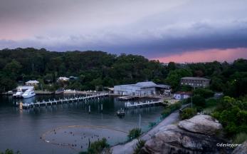 201503_Sydney-15
