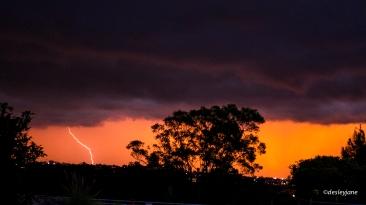 201503_Sydney-22