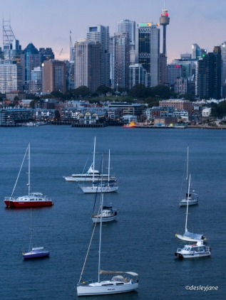 201503_Sydney-9