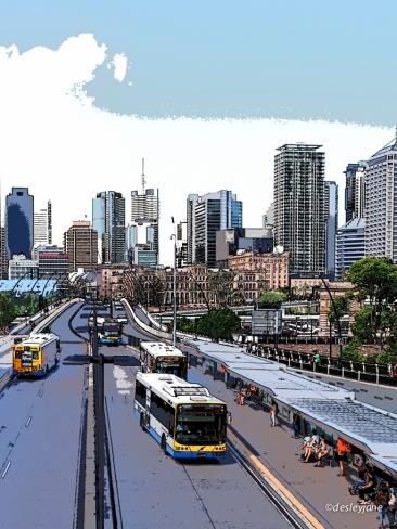 Brisbane Buses.