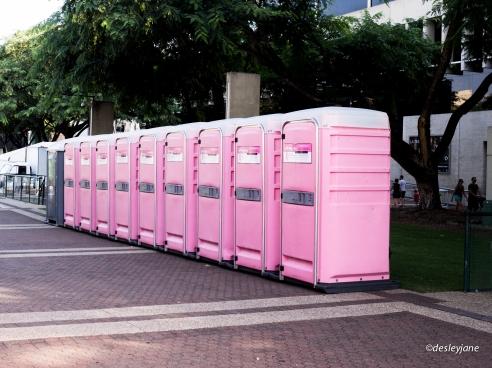 So much Pink.