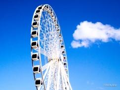 Brisbane Wheel.