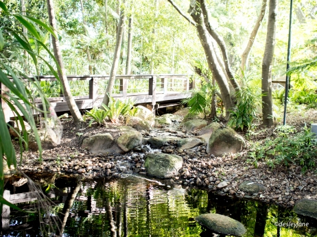 Rainforest Walk.
