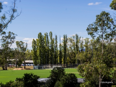 04_Canberra-19