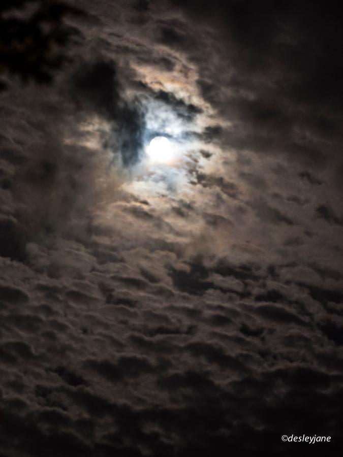 2015_Moon-1