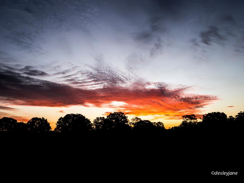 2015 - Sunsets-4