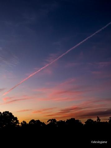 Sunset Light.