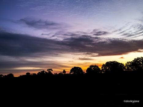 2015 - Sunsets-6