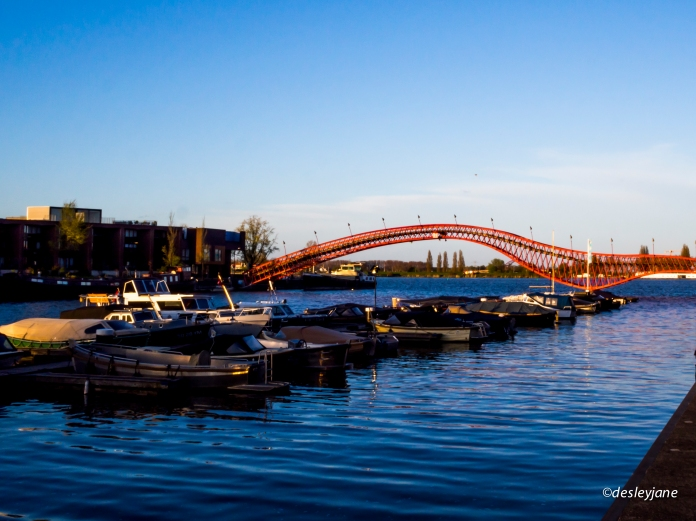 201504_Amsterdam-167
