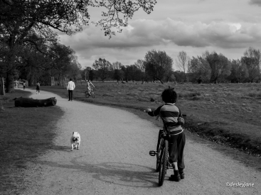 A boy, his bike and his puppy.