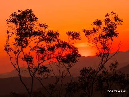 Tamborine Sunset.