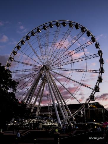 Brisbane Wheel - unbroken!
