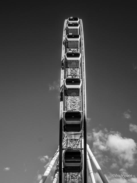 The Wheel.