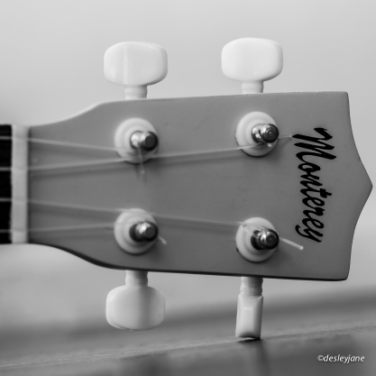 The Headstock.