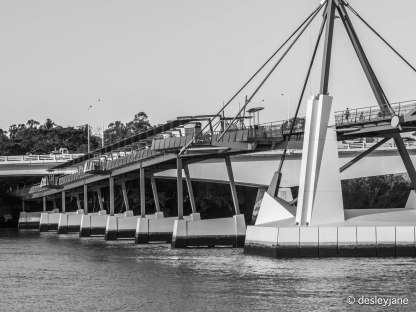 The Goodwill Bridge Closer.