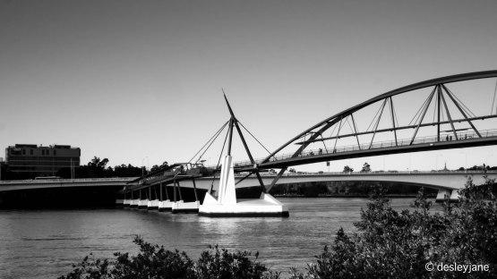 The Goodwill Bridge.