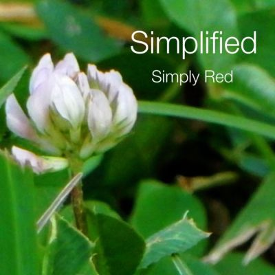 simplified_beespeak