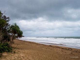 Windy Day.