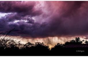 Brisbane Storm - my photo for World Photo Day.