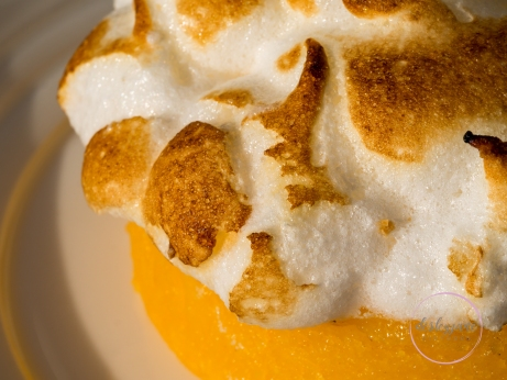 Lemon Meringue Macro