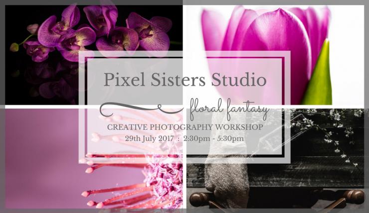 Pixel Sisters Studio-20170719FF