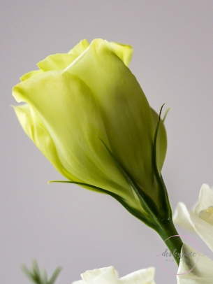 Lizzianthus&Iris-16
