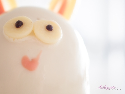BunnyCake-14