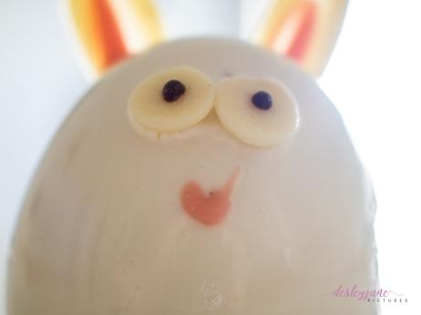 BunnyCake-3
