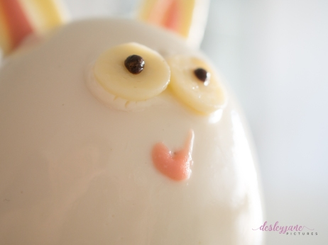 BunnyCake-7
