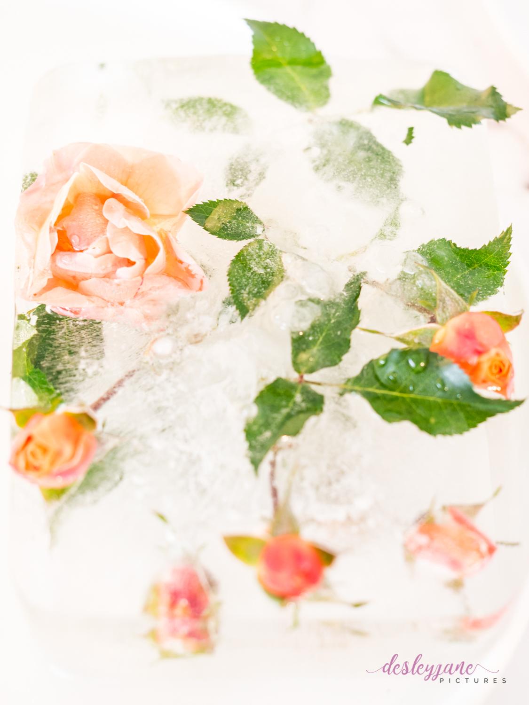 Rose_1-4