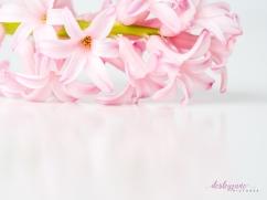 Hyacinths-31