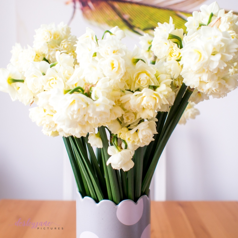Flower Stock-2