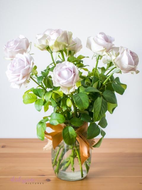 lavender roses-1