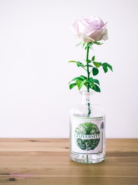 lavender roses-25