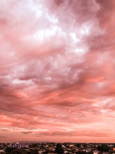 pinkskies_australiaday-3