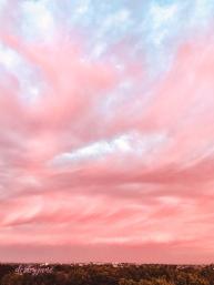 pinkskies_australiaday-4