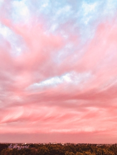 pinkskies_australiaday-4